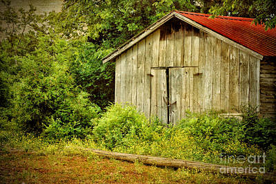 Photograph - Old Country Shed by Cheryl Davis
