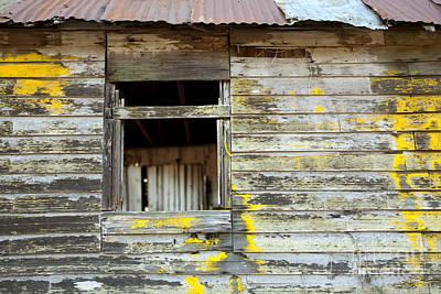 Cabin Window Photograph - Old Dilapidated Window by Matt Tilghman