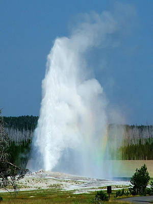Photograph - Old Faithful 1 by Ken Smith