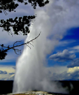 Photograph - Old Faithful by Ellen Heaverlo