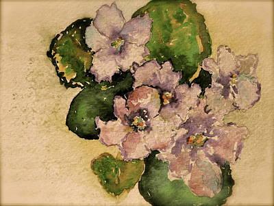 Old-fashioned African Violets Original