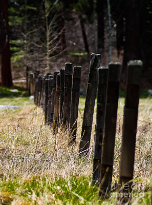 Colored Pencils - Old Fences by Mitch Shindelbower