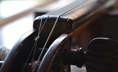 Photograph - Old Fiddle 3 by Bill Owen