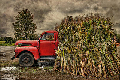 Old Ford Truck Art Print by Pat Abbott