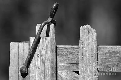 Photograph - Old Gate Hasp by JT Lewis