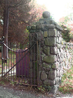 Photograph - Old Gate by Viola El