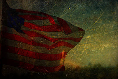 Photograph - Old Glory by Emily Stauring