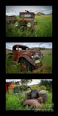 Photograph - Old Guys 7 by Idaho Scenic Images Linda Lantzy