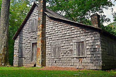 Old Home In Forest Art Print by Susan Leggett