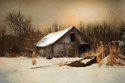 Old Homestead Barn Print by Mary Timman