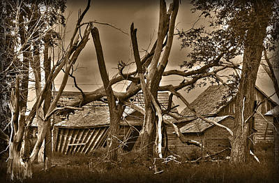 Nature Photograph - Old Homestead by Shane Bechler