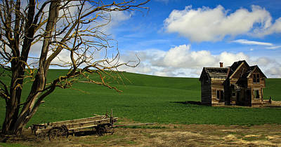 Photograph - Old House And Wagon by Steve McKinzie