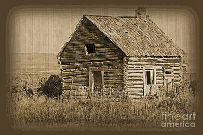 Photograph - Old Hunting Cabin - Wyoming by Donna Greene