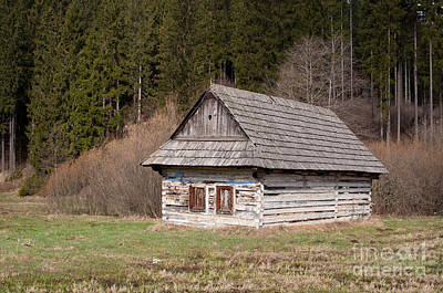 Art Print featuring the photograph Old Log House by Les Palenik