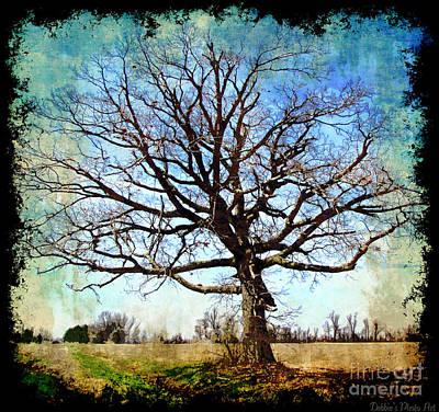Digital Art - Old Oak Tree by Debbie Portwood