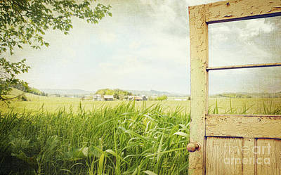 Aging Photograph - Old Peeling Door With Rural  Landscape  by Sandra Cunningham