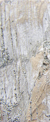 Photograph - Old Piling - Triptych 1 by Peri Craig
