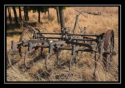 Photograph - Old Plough by Miguel Capelo