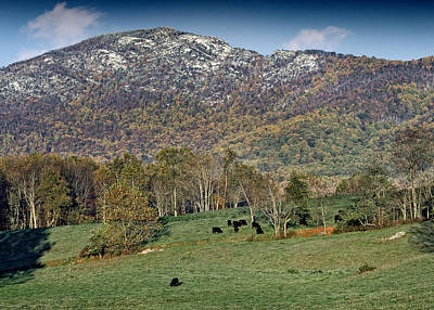 Old Rag Mountain - Shenandoah National Park - Virginia Art Print by Brendan Reals