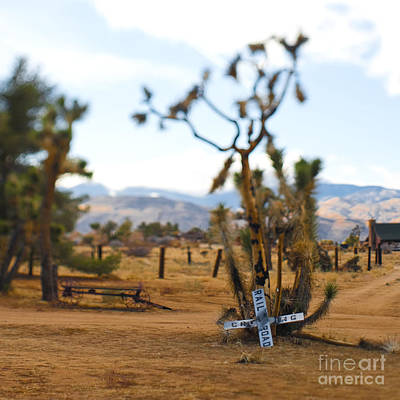 Pioneertown Photograph - Old Railroad Crossing Sign In Desert by Eddy Joaquim