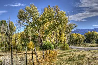 Art Print featuring the photograph Old Ranch Near Bishop by Michele Cornelius