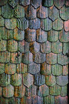 Photograph - Old Roof Tiles by Jen Morrison
