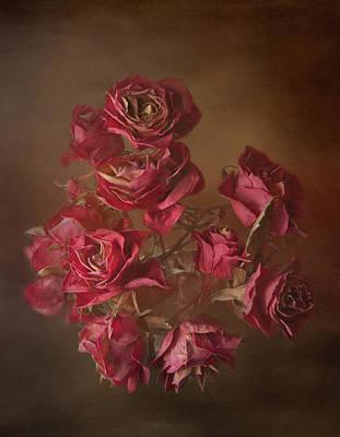 Old Roses Art Print by Karen Martin