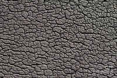 Art Print featuring the photograph Old Rubber Tire Surface  by Les Palenik