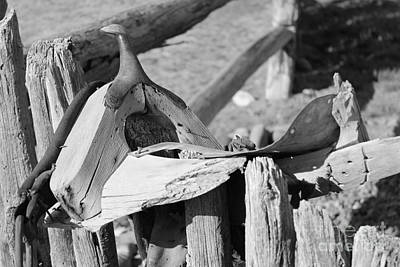 Photograph - Old Saddle by Pamela Walrath