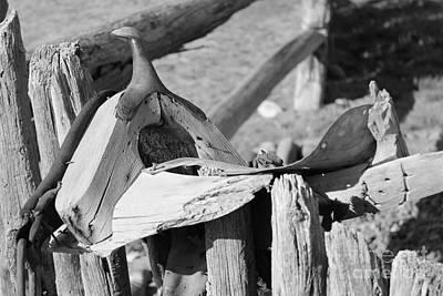 Photograph - Old Saddle by Pamela Walrath