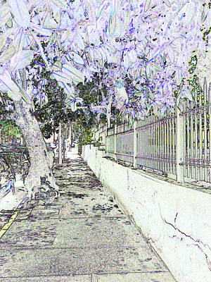 Photograph - Old San Juan 14 by Allan Rothman