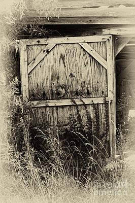 Old Shed Door Art Print by Eva Thomas