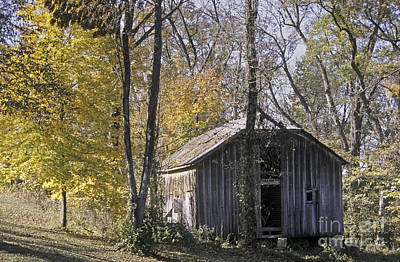 Photograph - Old Shed In Fall by Richard Nickson