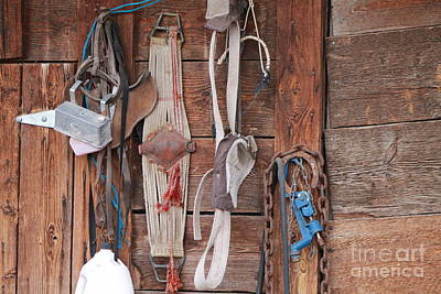 Photograph - Old Tack In Color by Pamela Walrath