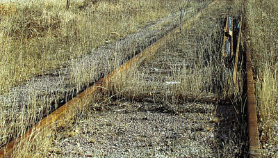 Photograph - Old Train Tracks No.1 by Ms Judi