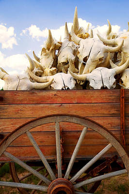 Old Wagon Full Of Buffalo Skulls Art Print by Garry Gay