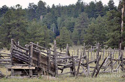 Cattle Chute Photograph - Old West by Juls Adams