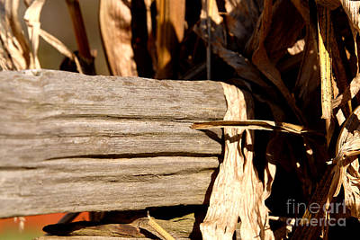 Photograph - Old Wooden Fence by JT Lewis