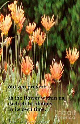 Photograph - Old Zen Proverb by Richard Donin