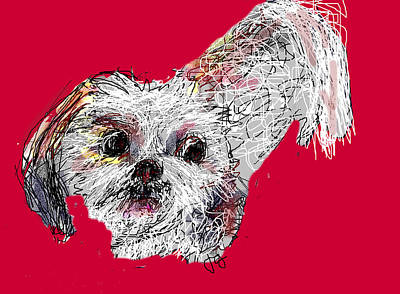 Digital Art - Ollie by Joyce Goldin