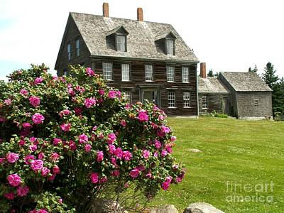 Olson House With Flowers Art Print by Theresa Willingham
