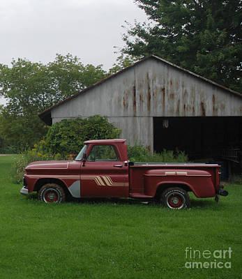 Photograph - On The Farm by Grace Grogan