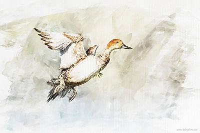 On The Fly Art Print by Kolor Palette