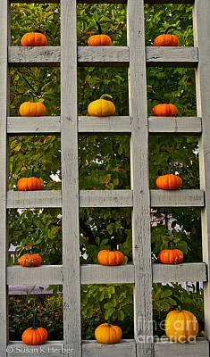 Photograph - On The Grid by Susan Herber