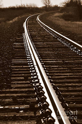 Photograph - On The Right Track by Anjanette Douglas