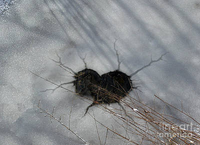 Photograph - On The River. Heart In Ice 03 by Ausra Huntington nee Paulauskaite