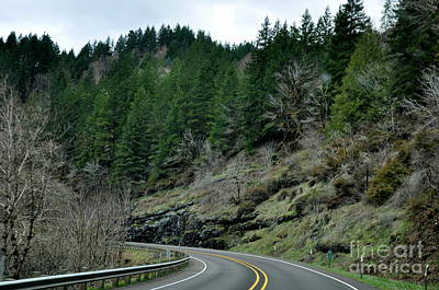 Oregon Photograph - On The Road Again  2 by Tanya  Searcy