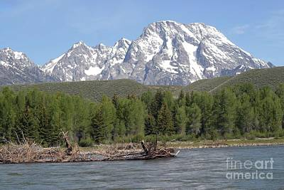 Art Print featuring the photograph On The Snake River by Living Color Photography Lorraine Lynch