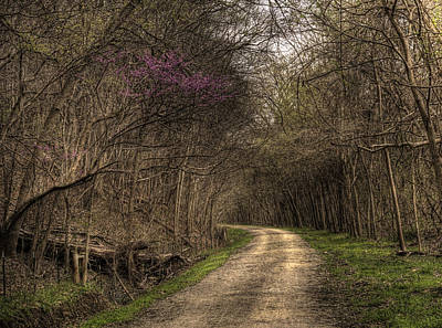 On This Trail Art Print by William Fields