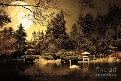 Once Upon A Time Under The Moon Lit Night . Golden Cut . 7d12782 Art Print